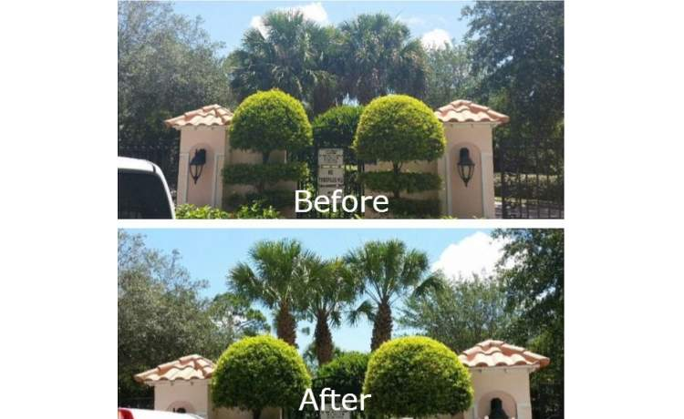 Before and after landscape pictures