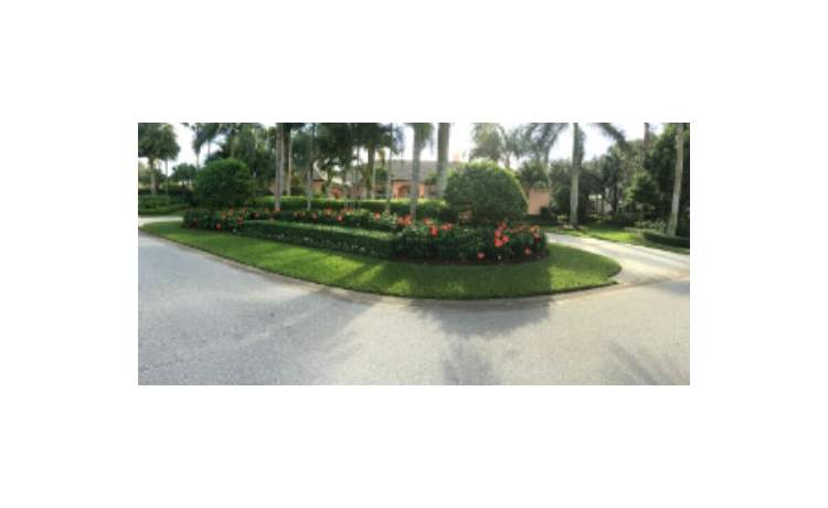 Front lawn with hibiscus flowers and trees
